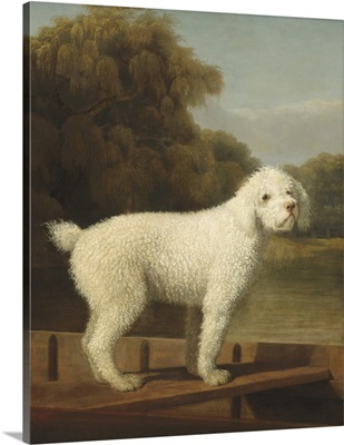White Poodle in a Punt, by George Stubbs, 1780, British painting