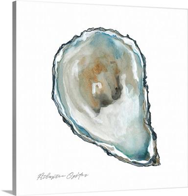 Atlantic Oyster
