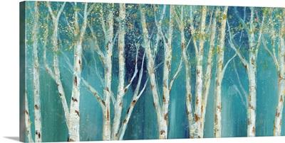 Birch on Blue