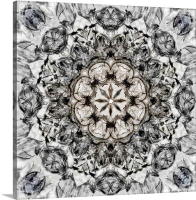 Black White Kaleidoscope I