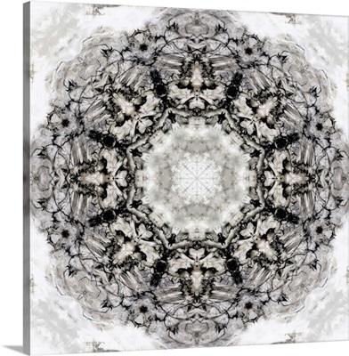 Black White Kaleidoscope II