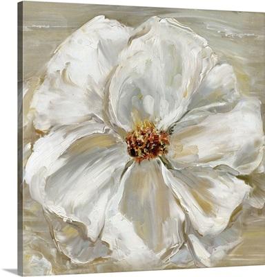 Bloomin' Beauty II