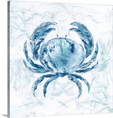 Blue Marble Coast Crab