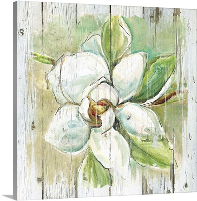 Country Magnolia