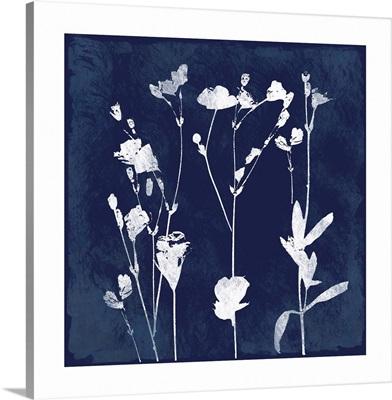 Cyanotype Botanical I