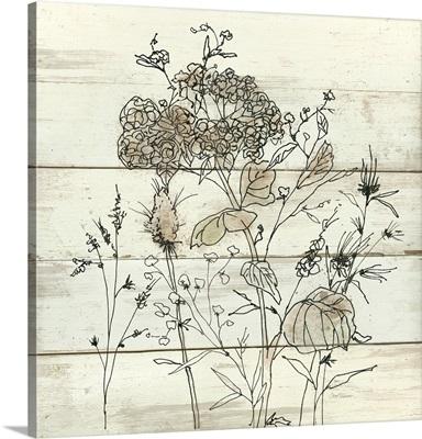 Dried Flower Study II