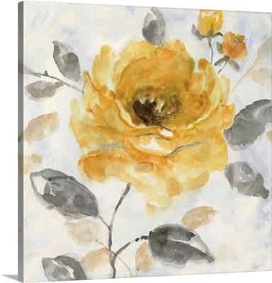 Honey Rose I
