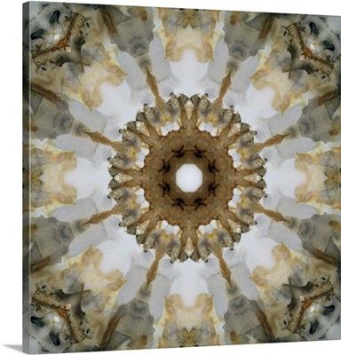 Kaleidoscope Honey Gray Agate