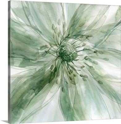 Macro Sage Flower I