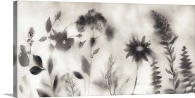 Misty Wildflower Morning