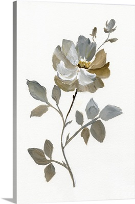 Neutral Rose I