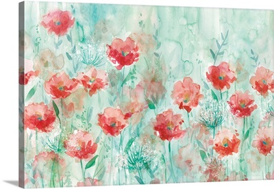 Poppies and Queen Anne