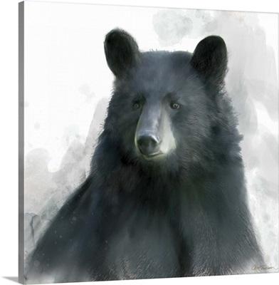 Rainsoft Bear