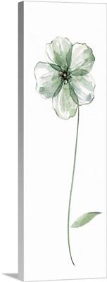 Sage Flower II