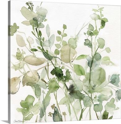 Sage Garden II