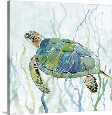 Sea Turtle Swim II