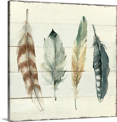 Shiplap Feathers I
