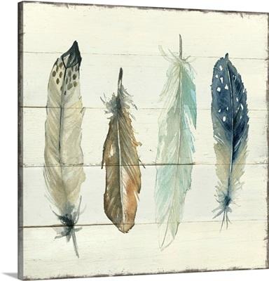 Shiplap Feathers II