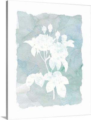 Silhouette Botanical II