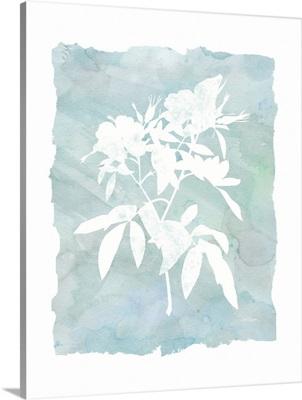 Silhouette Botanical III