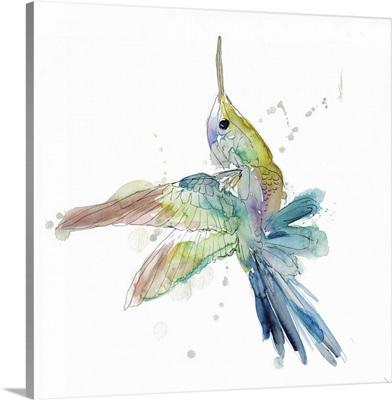 Sketchbook Hummingbird