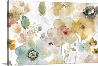 Soft Spring I