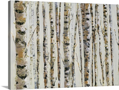 Sparkle Birch