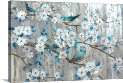Teal Birds