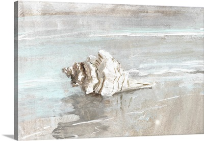 Washed Ashore I