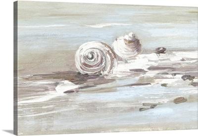 Washed Ashore II
