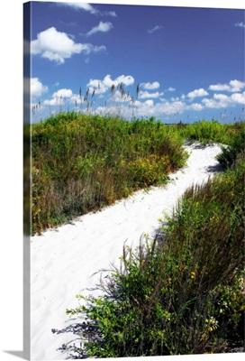 A Sandy Pathway II