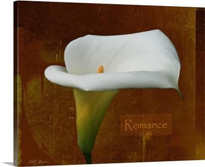 Calla Lily Romance