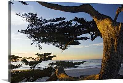 Carmel Sunset 2