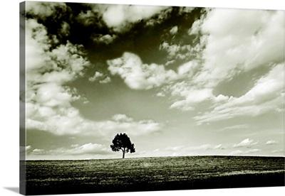 Cloudy Skies III