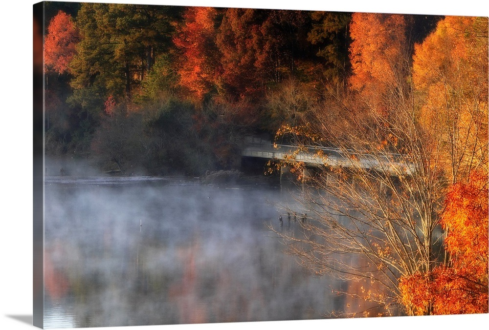 Cold Autumn Morning Ii Wall Art Canvas Prints Framed