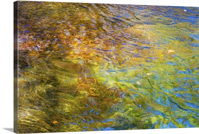 Colorful Reflections I