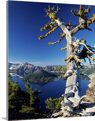 Crater Lake I