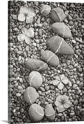 Curving Rocks I