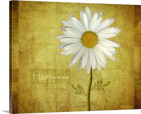Daisy Happiness