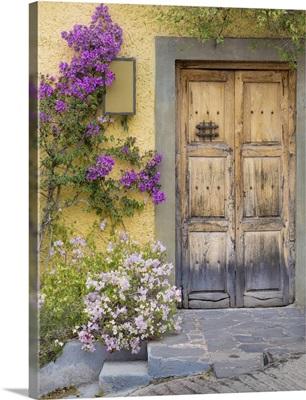Doorway in Mexico I