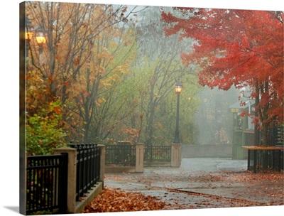 Fall Plaza I
