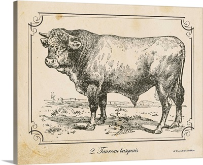 Farm Bull II