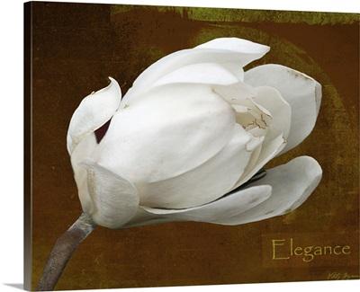 Floral Dance Elegance