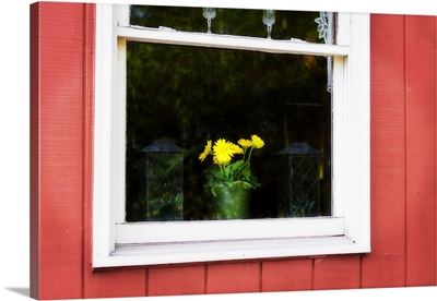 Flowers in a Window I