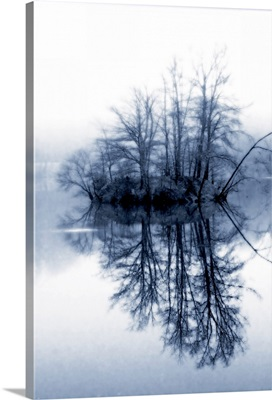Fog on the Lake II