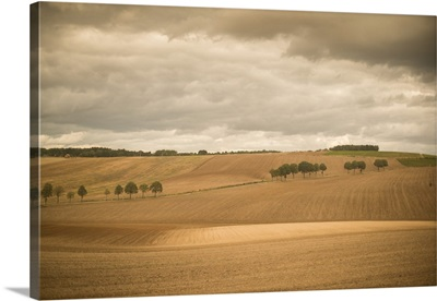 French Countryside I