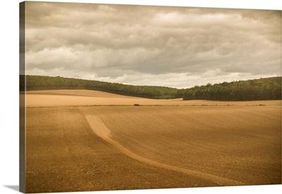 French Countryside II