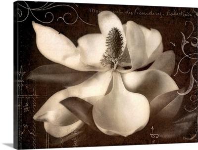Garden Journal I