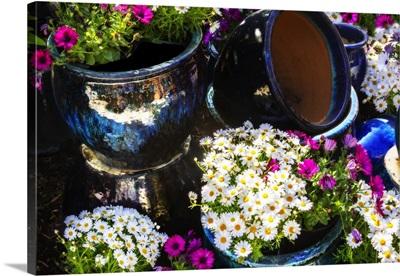 Glazed Flower Pots I