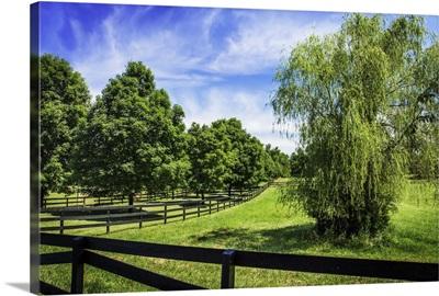 Green Springs Farm II